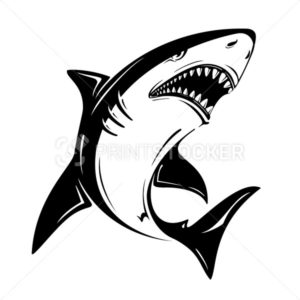 Angry black shark vector illustration isolated on white background - PrintStocker.com