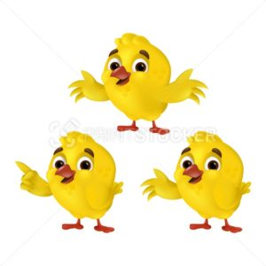 Set of cute cartoon chicks isolated on a white background. Vector illustration with funny three yellow chickens in different poses, showing, flapping and hugging. Can be used for Easter layouts design - PrintStocker.com