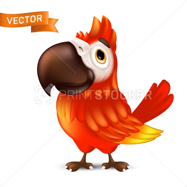 Cute ara parrot with big beak, cartoon tropical bird. Vector illustration of funny red macaw mascot character isolated on white background - PrintStocker.com