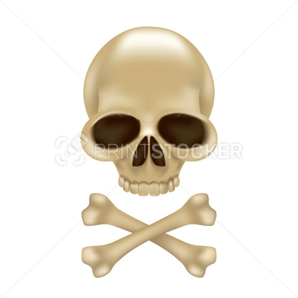 Pirate skull and crossbones without hat 3D sign or emblem. Funny vector illustration of jolly roger isolated on white background - PrintStocker.com