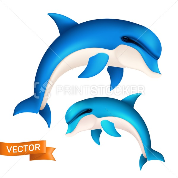 Realistic blue dolphin in motion. Vector illustration of cute jumping sea fish or swimming aquatic mammal isolated on white background - PrintStocker.com