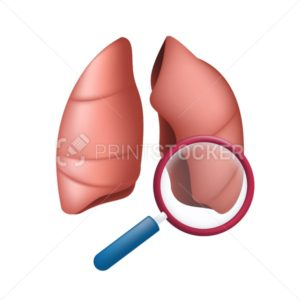 StockHuman body lungs under a magnifying glass. Vector medical illustration of finding virus or search in the internal organ with a magnifier isolated on white background - PrintStocker.com