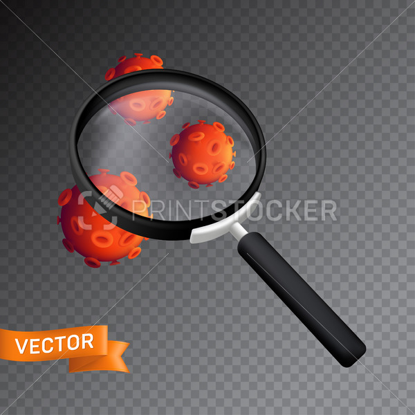 Bacteria or virus cells under the magnifying glass. Vector illustration isolated on a transparent background - PrintStocker.com