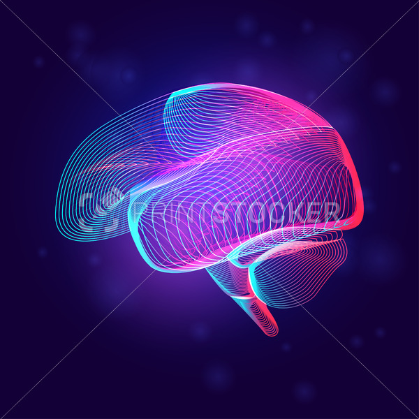 Human brain medical structure. Outline vector illustration of body part organ anatomy in 3d line art style on neon abstract background - PrintStocker.com