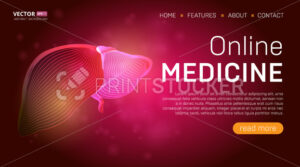 Online medicine landing page template or medical hero banner design concept. Human liver outline organ vector illustration in 3d line art style on abstract background - PrintStocker.com