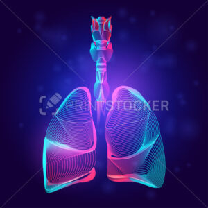 Human lungs medical structure. Outline vector illustration of body part organ anatomy in 3d line art style on neon abstract background - PrintStocker.com