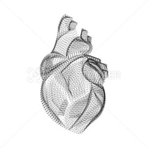 Human heart silhouette consisting of black dots and particles. 3D vector wireframe of internal organ with a grain texture. Abstract geometric icon with dotted structure isolated on a white background - PrintStocker.com