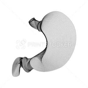 Stomach silhouette consisting of black dots and particles. 3D vector wireframe of an internal organ with a grain texture. Abstract geometric icon with dotted structure isolated on a white background - PrintStocker.com