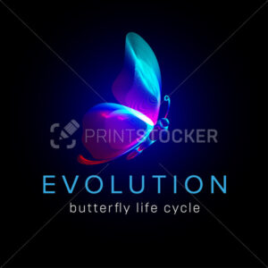 Evolution butterfly life cycle. Flying moth neon silhouette in 3D line art style. Vector illustration of glowing papillon wireframe side view isolated on a dark background - PrintStocker.com