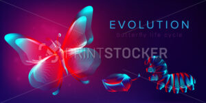 Evolution of a butterfly life cycle horizontal banner. 3D vector illustration with abstract stereo neon silhouettes of insects: caterpillar, pupa and butterfly. Metamorphosis concept in line art style - PrintStocker.com