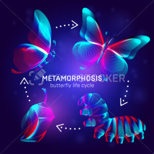 Metamorphosis concept. Butterfly life cycle banner. 3D vector illustration with abstract stereo neon silhouettes of insects – caterpillar, chrysalis and butterfly transformation process stages - PrintStocker.com