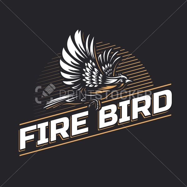 Fire Bird silhouette logo template on black background – Hand drawn outline flying phoenix or hawk with spread wings vector illustration - PrintStocker.com