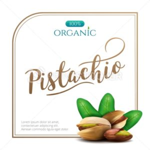 Vector frame of realistic pistachio with leaves isolated on white background - PrintStocker.com